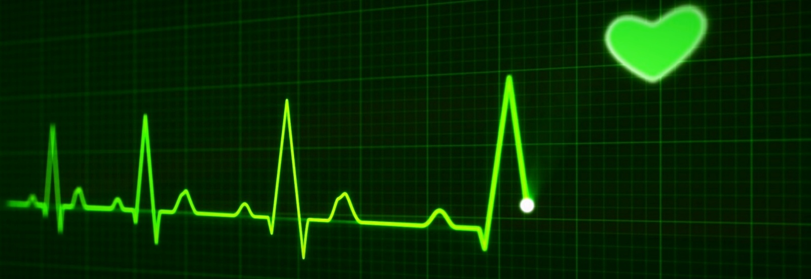 heartbeat-163709_1280-546582-edited.jpg