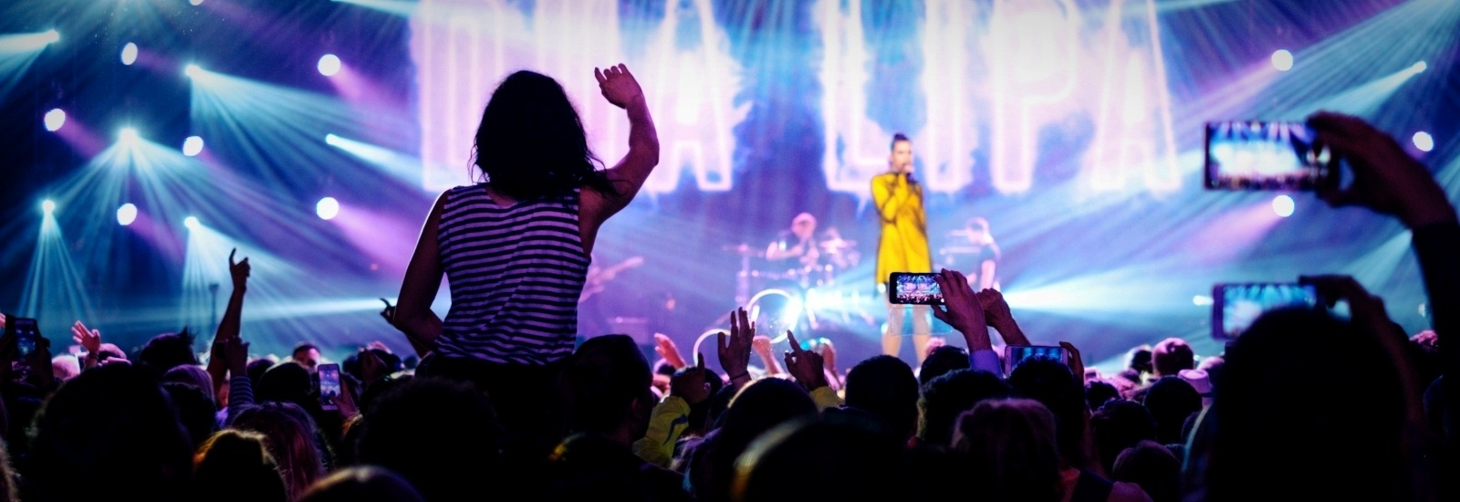 concert crowd-369670-edited-409739-edited.jpeg